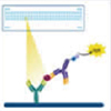 Proteome Profilertrade;