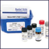 Human CD28 Duoset ELISA