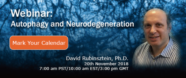 Autophagy and Neurodegeneration Webinar