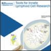 innate lymphoid brochure