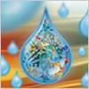 Multi-analyte Immunoassays