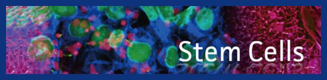 stem cells enews
