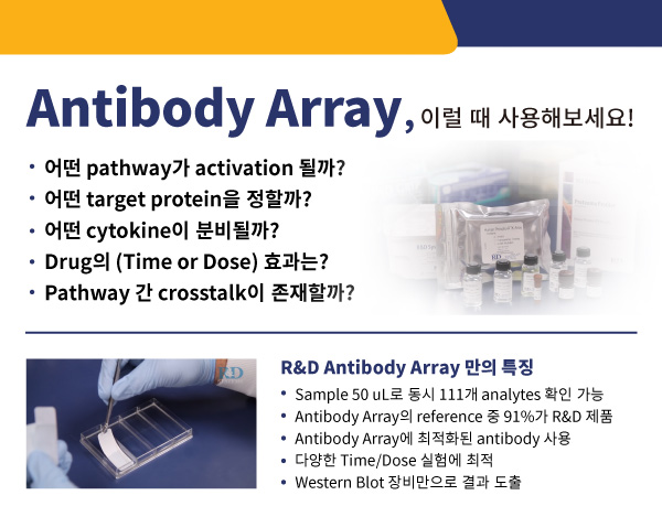 Protein, cell culture, reconstitute, prodots, gmp, media, media preparation, 웅비, woongbee, 컬쳐, 배지, 단백질