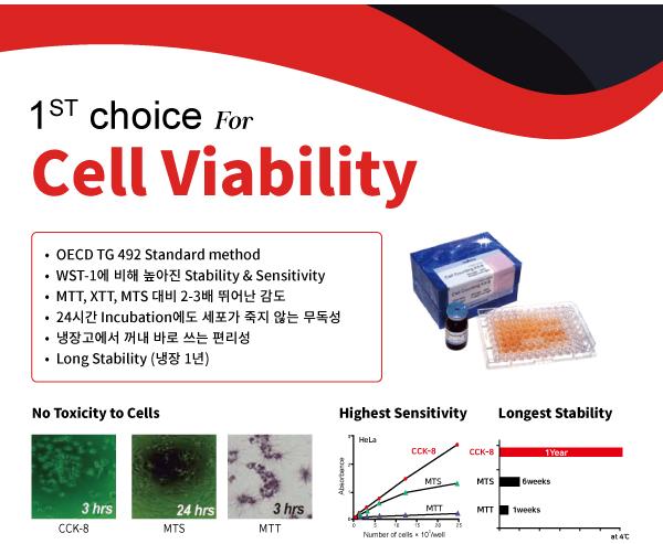 CCK-8, WST, 세포독성, MTT, 동물대체시험법, 안자극시험법, 각막, 안구, 피부자극시험법, 피부, OECD, 식약처